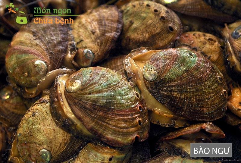 Bào ngư là loại hải sản giúp lưu thông máu tới các cơ quan