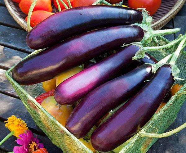 Người bị đau dạ dày nên ăn cà tím