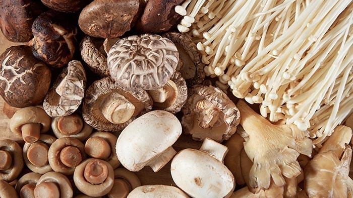 Nấm giúp cho xương dẻo dai hơn