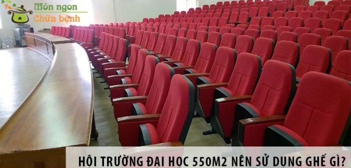 Thiết kế hội trường đại học 550m2 nên sử dụng ghế gì?
