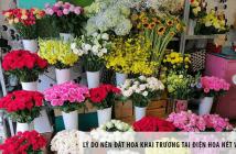 Lý do nên đặt hoa khai trương tại điện hoa Nét Việt quận 5