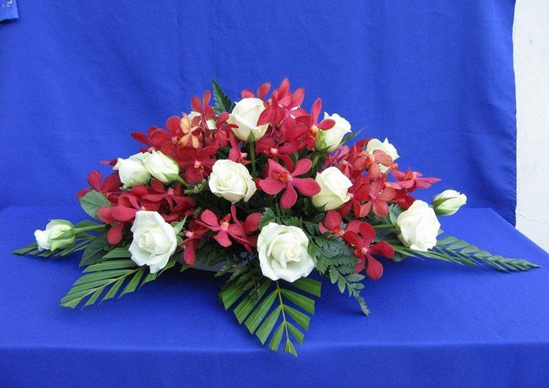 Hoa lan thường được dùng làm hoa hội nghị